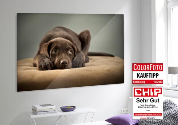 Ein Gutschein über 300,– Euro von CEWE für Fotoprodukte!